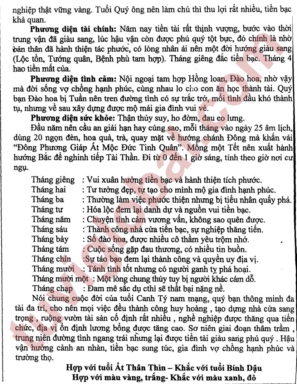 Bính Tý (19.02.1996 - 06.02.1997) - Dương Nam