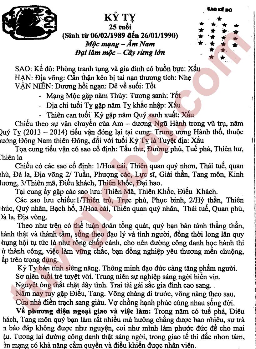 Kỷ Tỵ (06.02.1989 - 26.01.1990) - Âm Nam