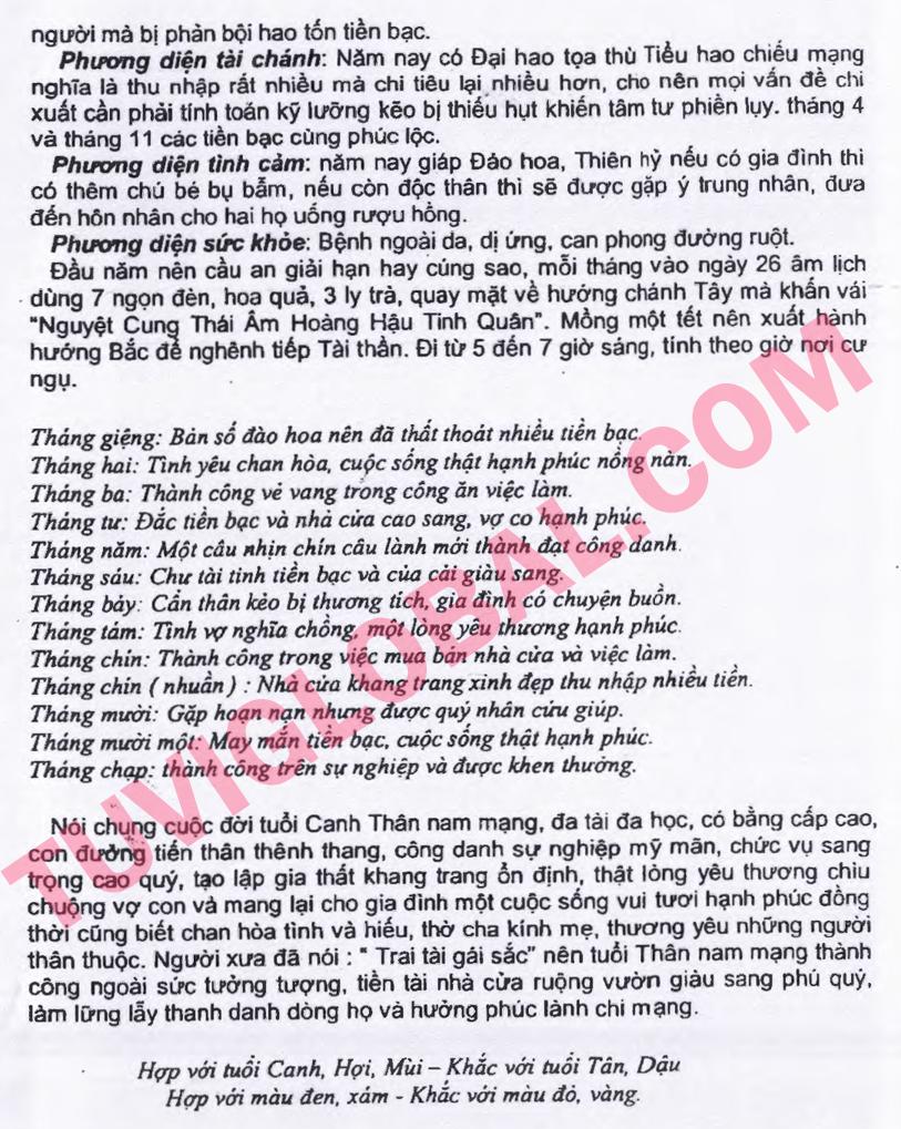 Canh Thân (16.02.1980 - 04.02.1981) - Dương nam